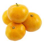 Clementiner Klass 1
