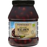 Oliver Kalamon Ekologiska Fontana 2.3/1,5k